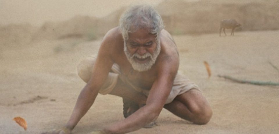 KADVI HAWA – Movie on the effects of climate change