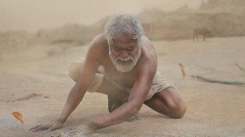 Sanjay-Mishra-kadvi-Hawa